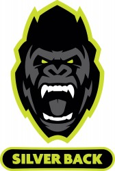 Image of Silverback